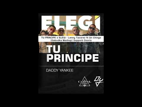 tu-principe-x-elegi---lenny-tavarez-ft-un-chingo-(gabodka-mashup)-support-osorio