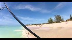 Beach Shark Fishing Anna Maria Island Fun Size Sharks