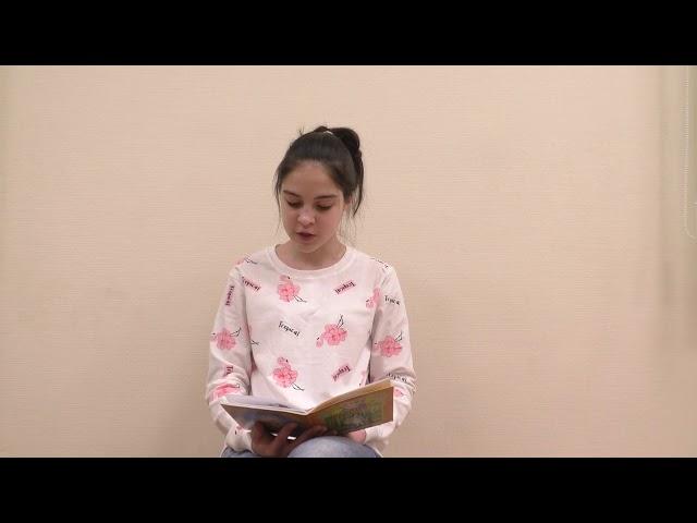 Изображение предпросмотра прочтения – ВикторияКаландарова читает произведение «Белые птицы» (Разные писатели )