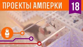 видео Arduino   Электронные печеньки