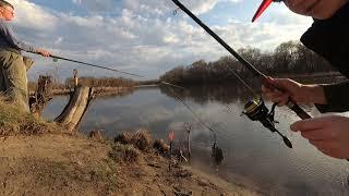 Рыба не даёт присесть Вот это рыбалка Рыбалка на реке Сура Ловля уклейки
