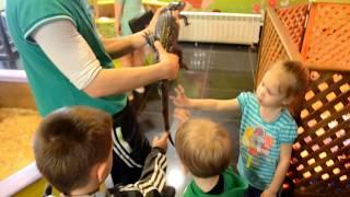 Идем в Контактный Зоопарк. Гладим крокодила, питона и игуану. Тольятти Май 2016