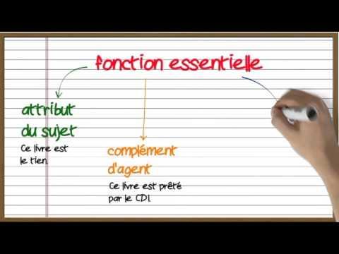 Les fonctions grammaticales
