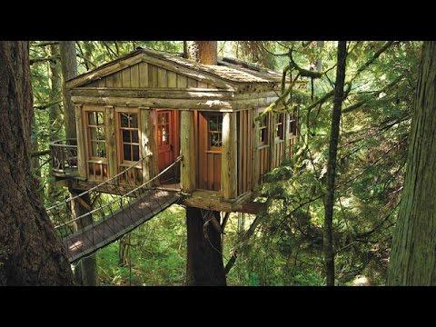 видео: Домик на дереве