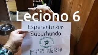 Lernu Esperanton kun Superhundo! – Leciono 6