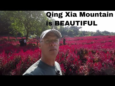 Qing Xia Mountain Park in Nanning, China Orchids, Flowers,Trees, Snakes and of course Chinese GIRLS
