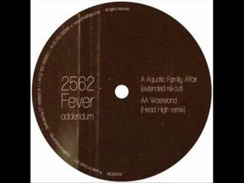2562 Wasteland Head High Remix WHEN IN DOUBT 2011