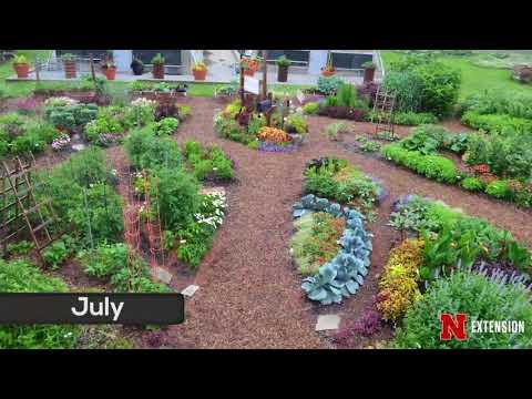 2017 Garden Time Lapse