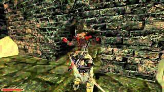 Прохождение игры Готика 2, часть 27 - Горный дракон