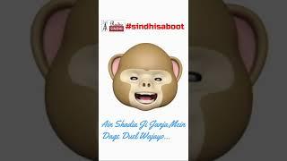 Sindhi Saboot Challenge revisited 🐵😂