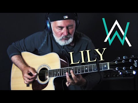Lily - Alan Walker - fingerstyle guitar cover