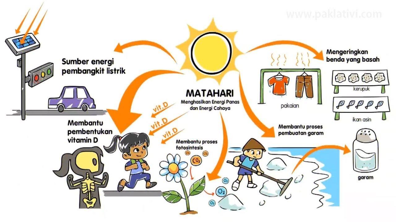 Manfaat Energi  Matahari  Bagi Makhluk Hidup YouTube