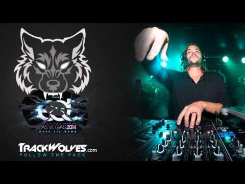 Seven Lions - Live @ Electric Daisy Carnival (Vegas) - 21.06.2014.mp4