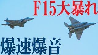 大暴れF15てんこ盛り!岐阜基地航空祭2016