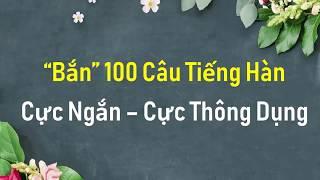 TỰ TIN BẮN 100 CÂU TIẾNG HÀN CỰC NGẮN - CỰC THÔNG DỤNG | Hàn Quốc Sarang