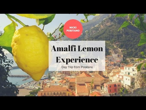 Amalfi Lemon Experience: Amalfi Lemon grove tour