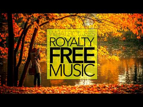 POP MUSIC Happy Emotional Blues Funk ROYALTY FREE Download No Copyright Content | FLOATERS