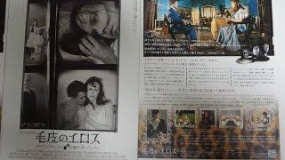 毛皮のエロス ダイアン・アーバス 幻想のポートレイト (2007) 映画チラシ ニコール・キッドマン ロバート・ダウニー・Jr