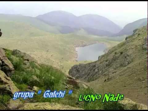 Galebi - Licno Nade