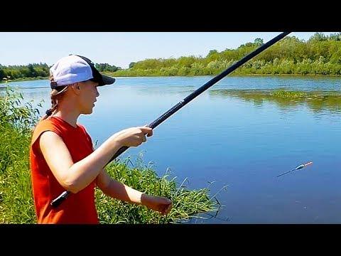 Уклейка на поплавок. Летняя рыбалка с удочкой на реке. Июнь