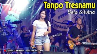 Download Lagu Tanpo Tresnamu (Denny Caknan) ~ Sela Silvina  ||  Izull Music + kendang cilik mp3