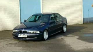 BMW Goryla
