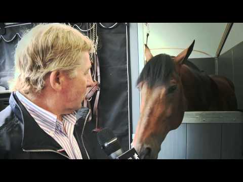 Equine Superstars: Nick Skelton's Big Star