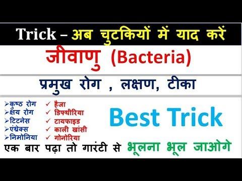 जीवाणु (Bacteria) से