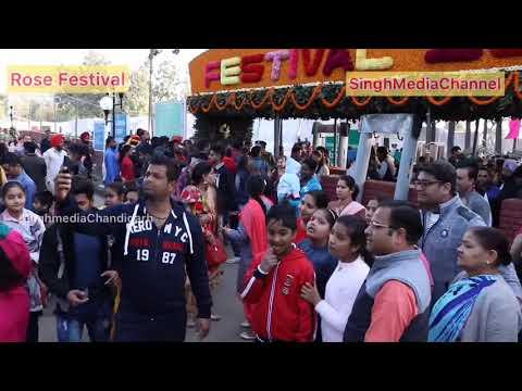 Rose Festival 2019 Chandigarh || Singh Media Chandigarh || Singh Media Channel