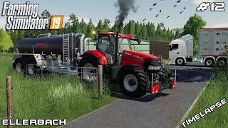 Installing water tanks & getting sheep | Animals on Ellerbach | Farming Simulator 19 | Episode 12