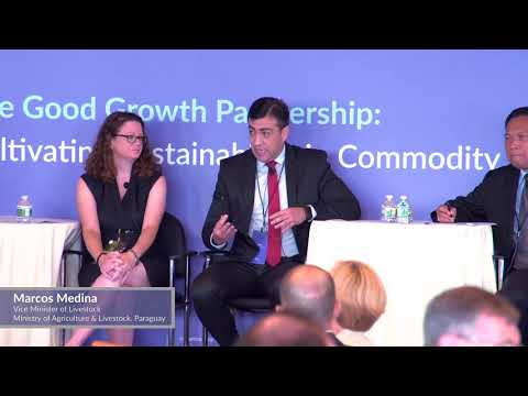 Panel Discussion: How to balance social, economic and environmental priorities