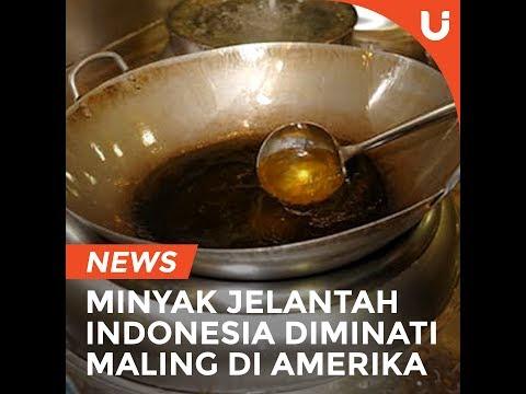 NEWS: Minyak Jelantah Indonesia Diminati Maling di Amerika