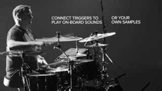 Hybrid Drums