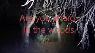 DEEP FOREST : Teaser fear in wood