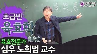 [육효학] 초급과정 공개강좌  (심우 노희범 교수)