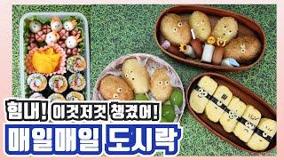 욜로리아 매일매일 도시락 : 힘내세요! 무지개 김밥 밥…