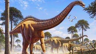 Zauropody - największe lądowe stworzenia wszech czasów