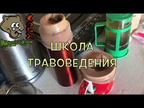 Способ заваривания травяного чая ДАМСКИЙ НОСОЧЕК (Школа травоведения)