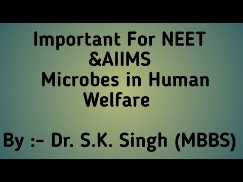 Microbes in Human Welfare For - Biology Class 12th, NEET & AIIMS { PART 3}  By Dr. S.K.Singh thumbnail