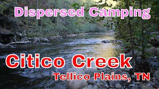 Citico Creek Dispersed Camping... TeĮlico Plains / Vonore TN // Boondocking // Dry Camping