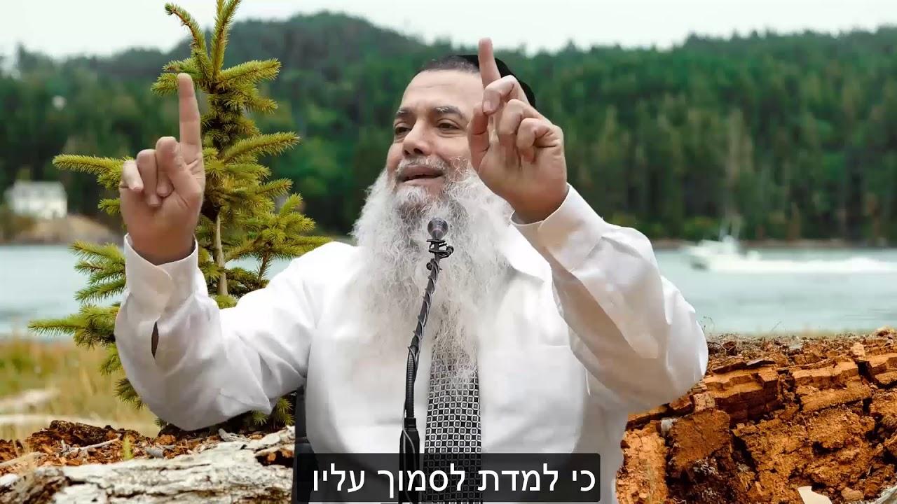 הרב יגאל כהן - קצרים | אם תראה הטוב שהיה לך בעבר - לא תחשוש מן העתיד [כתוביות]