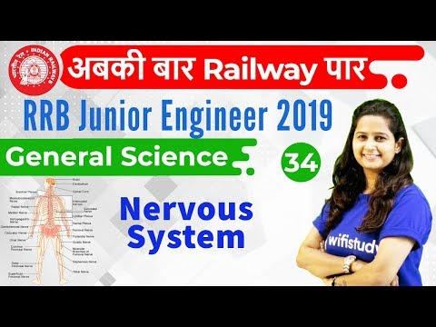 9:30 AM - RRB JE 2019 | GS by Shipra Ma'am | Nervous System