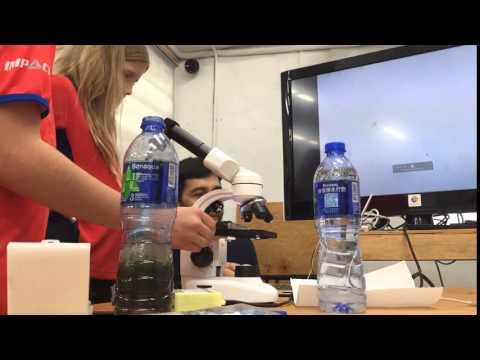 Observing plankton