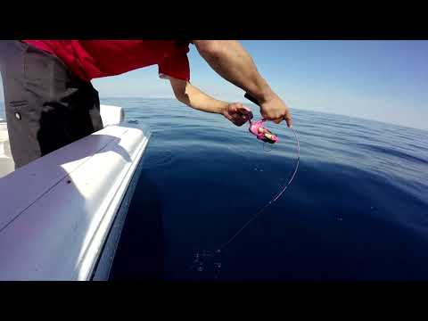 Bonito Fishing Roddy Lite Pink Rod