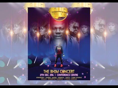 STONEBWOY LIVE - 1st annual #BHIM Concert Ghana