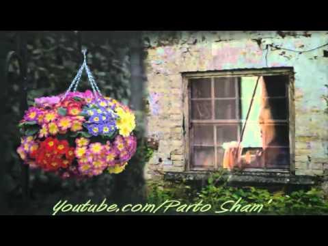 Persian violin   Farid Farjad   Gole Pamchal Instrumental