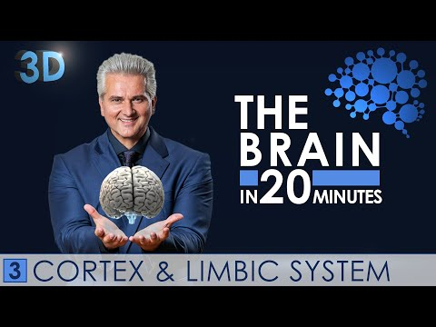 3d---the-brain-in-20-minutes---03-│-cortex-&-limbic-system-│-dr.-dr.-damir-del-monte-│-encephalon