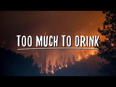 Anth - Too Much To Drink (Lyrics) Mp3