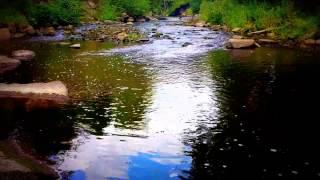 Video 2 Hour Gentle Stream - Relaxing Quiet River - Soothing Water Sound - Sleep - Bird Sounds - Serene download MP3, 3GP, MP4, WEBM, AVI, FLV Januari 2018