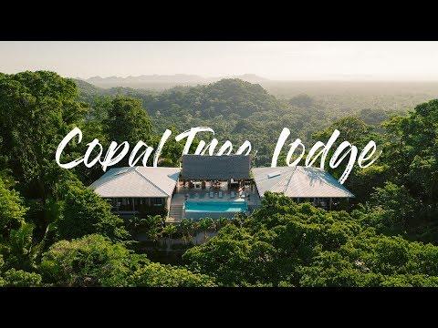 LUXURY JUNGLE RESORT - Copal Tree Lodge (Belize)
